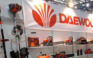 Обзор бензопил бренда Daewoo: характеристики, правила использования и техника безопасности