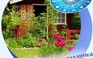 Лунный посевной календарь на 2020 год садовода и огородника