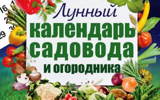 Лунный посевной календарь огородника на апрель 2020 года